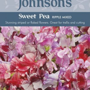 SWEET PEA RIPPLE MIXED