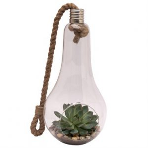 GLASS LIGHTBULB TERRARIUM & BIRD SEED FEEDER,