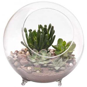 LARGE GLASS  TERRARIUM SPHERE WITH FEET, DIA. 25xH27cm