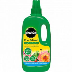 MIRACLE GRO POUR & FEED READY TO USE 1 LITRE