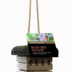BUSY BEE HOUSE