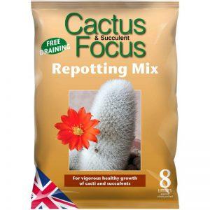 CACTUS & SUCCULENT FOCUS REPOTTING MIX – 8L