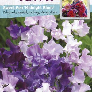 SRWL-SWEET PEA MIDNIGHT BLUES