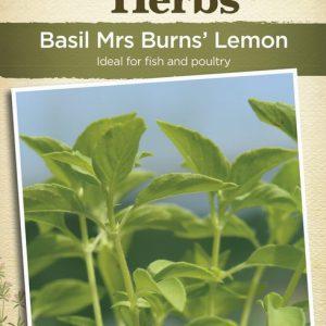 JK-BASIL MRS BURNS' LEMON