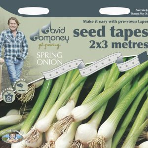 DD TAPE SPRING ONION WHITE LISBON