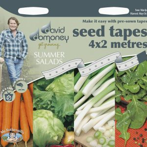 DD TAPE SUMMER SALADS
