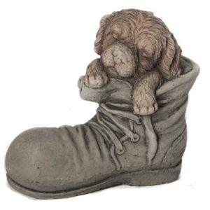 DOG IN SHOE