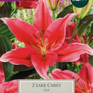 LILY LAKE CAREY – 2