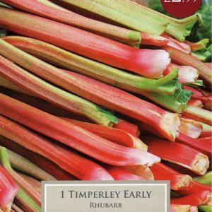 RHUBARB TIMPERLEY EARLY – 1