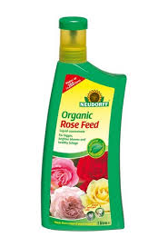 ORG ROSE FEED